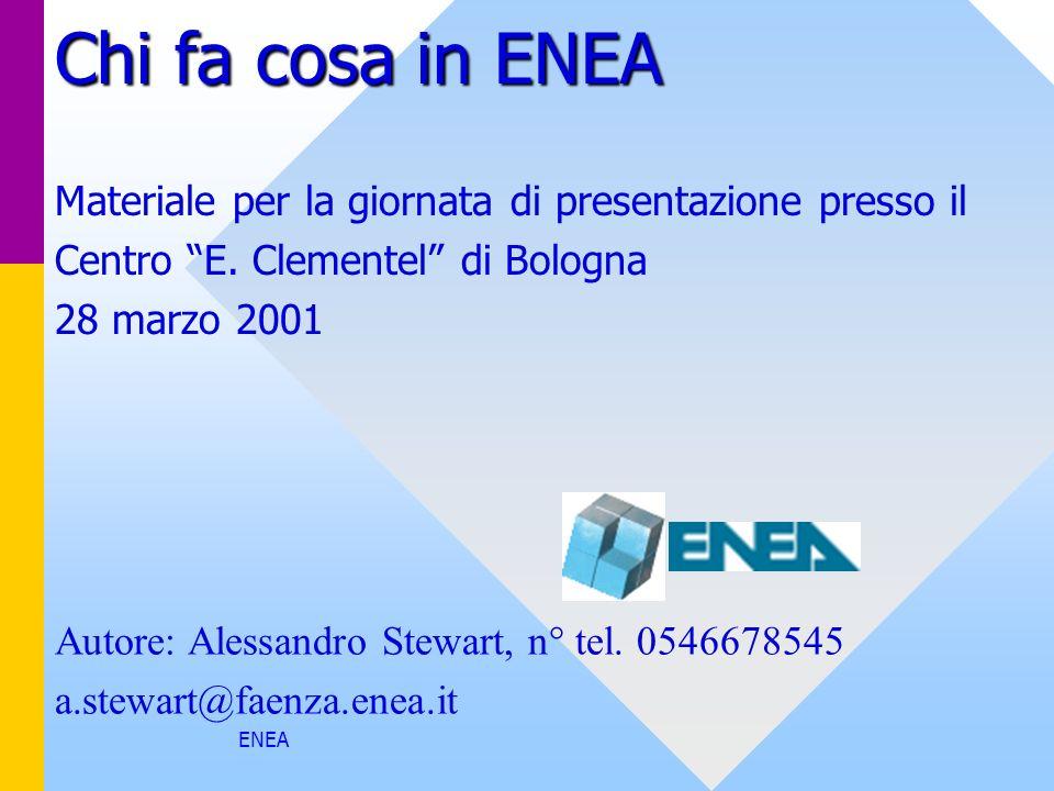 Chi fa cosa in ENEA Materiale per la giornata di presentazione presso il. Centro E. Clementel di Bologna.