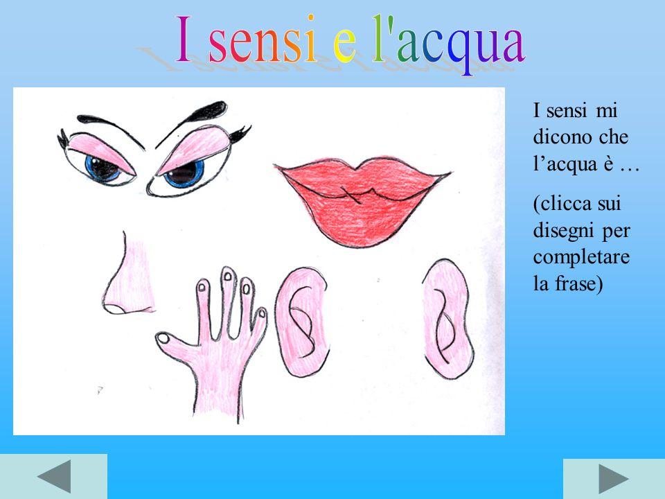 I sensi e l acqua I sensi mi dicono che l'acqua è …
