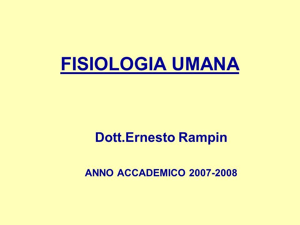 Dott.Ernesto Rampin ANNO ACCADEMICO 2007-2008