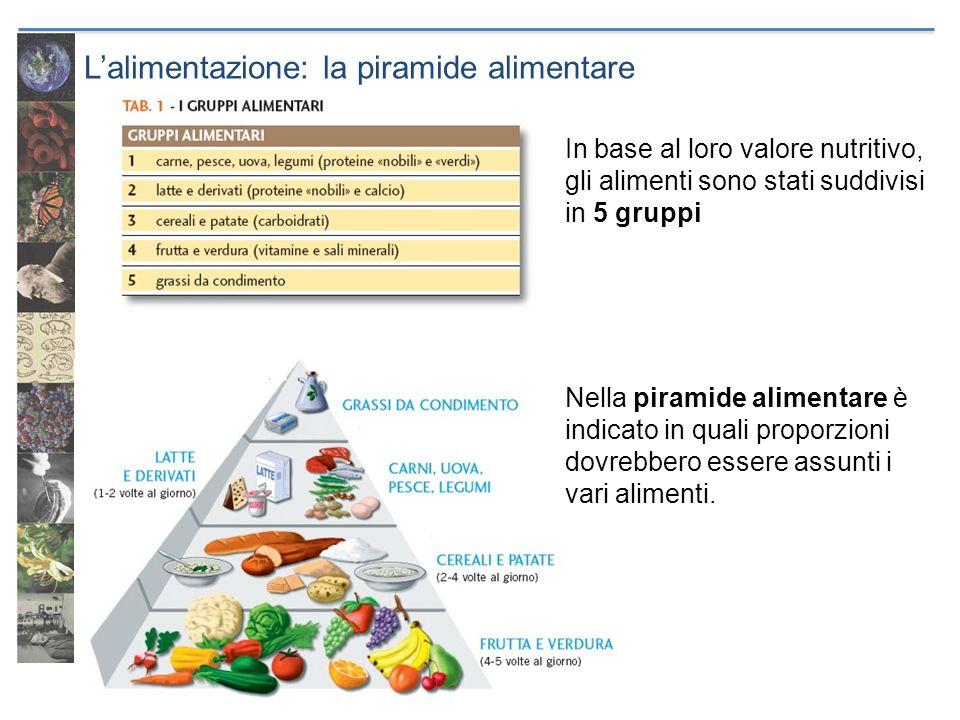 L'alimentazione: la piramide alimentare