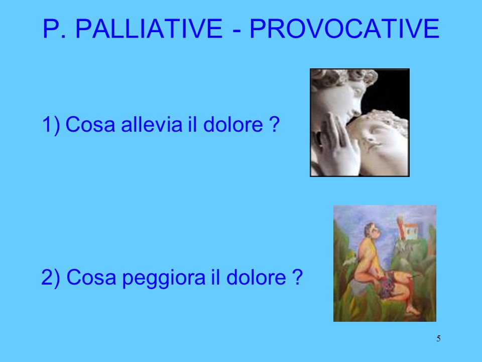 P. PALLIATIVE - PROVOCATIVE