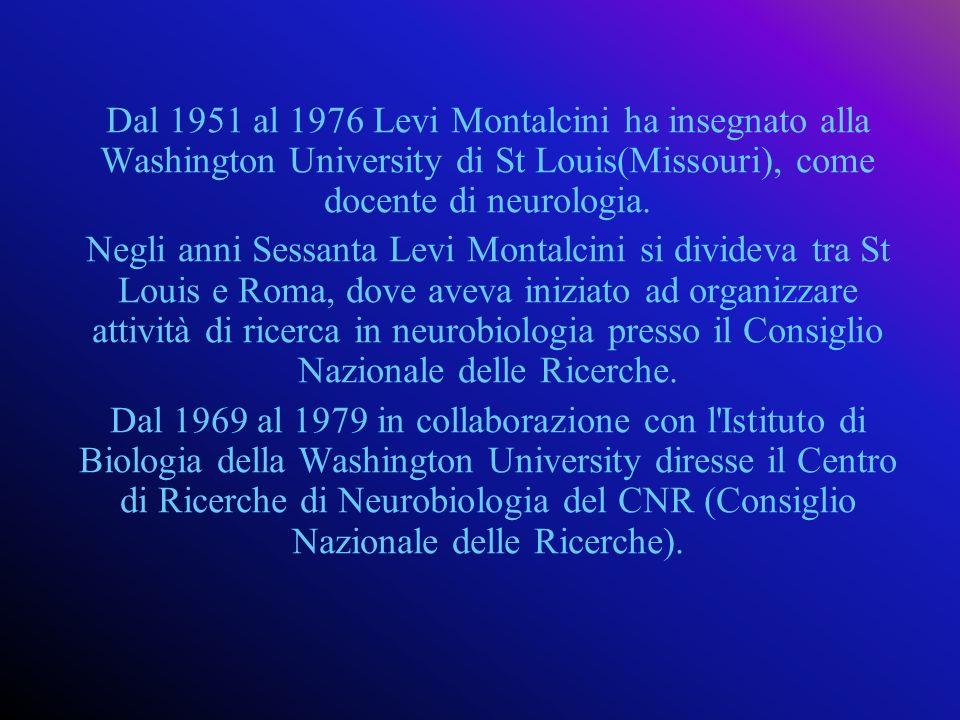 Dal 1951 al 1976 Levi Montalcini ha insegnato alla Washington University di St Louis(Missouri), come docente di neurologia.