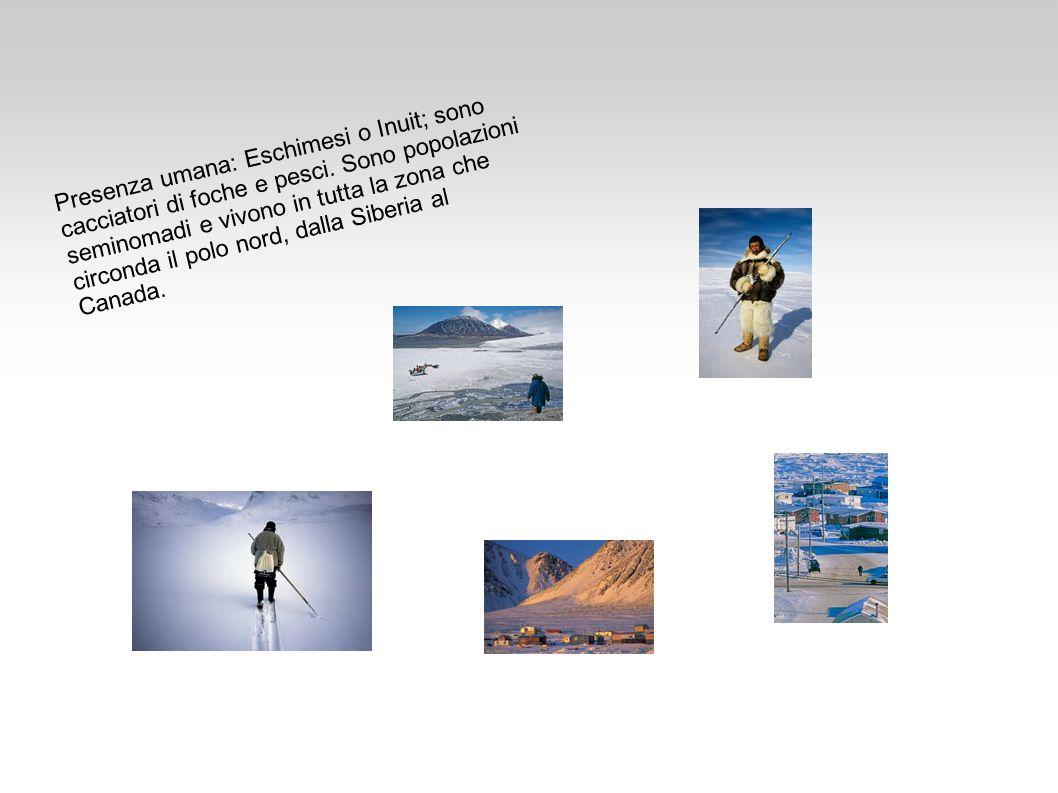 Presenza umana: Eschimesi o Inuit; sono cacciatori di foche e pesci