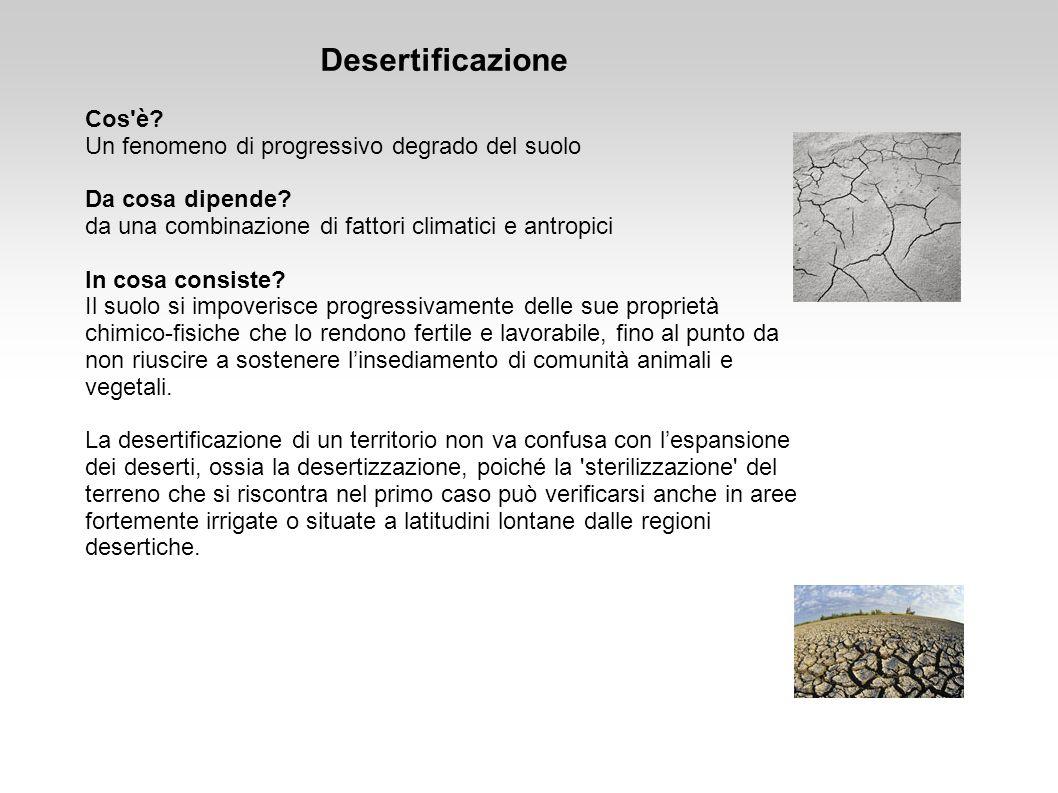 Desertificazione Cos è Un fenomeno di progressivo degrado del suolo
