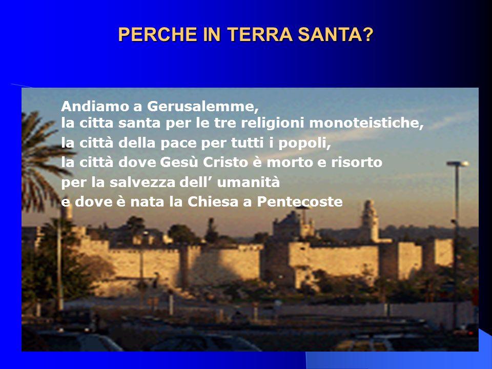 PERCHE IN TERRA SANTA Andiamo a Gerusalemme, la citta santa per le tre religioni monoteistiche, la città della pace per tutti i popoli,