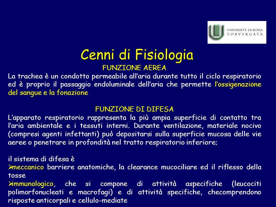 Cenni di Fisiologia FUNZIONE AEREA