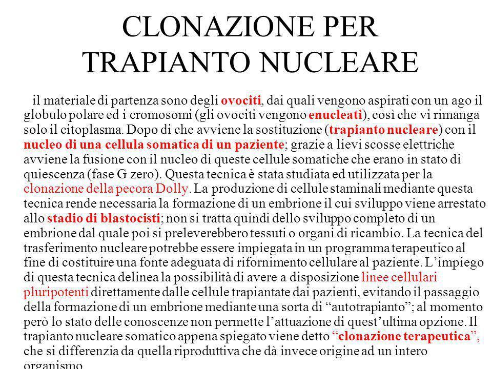CLONAZIONE PER TRAPIANTO NUCLEARE