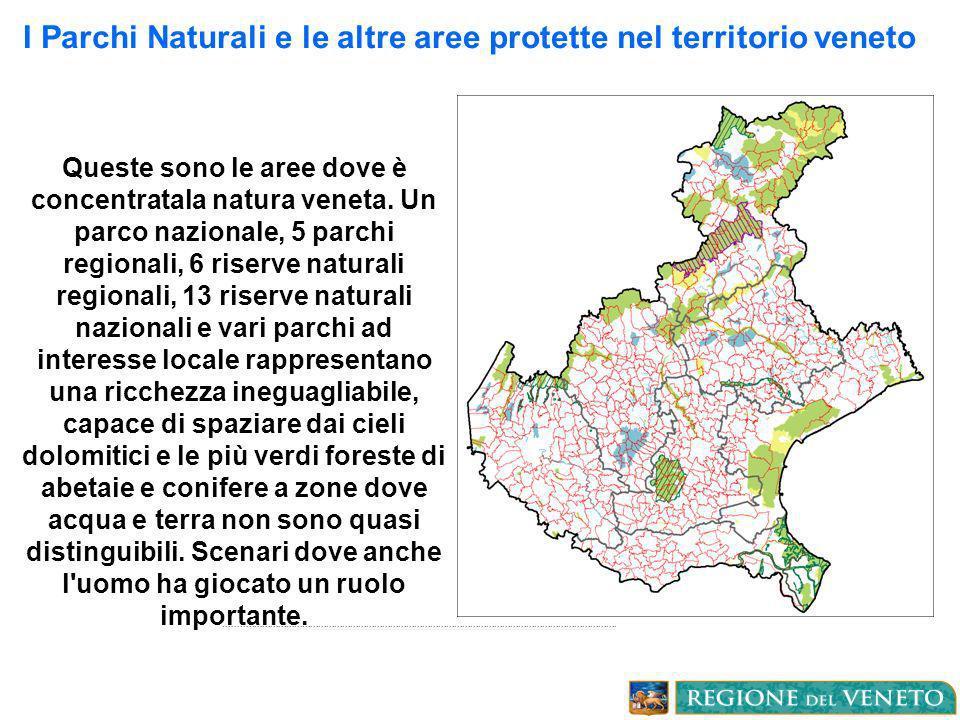 I Parchi Naturali e le altre aree protette nel territorio veneto