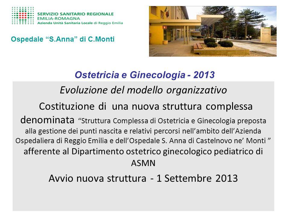 Ostetricia e Ginecologia - 2013