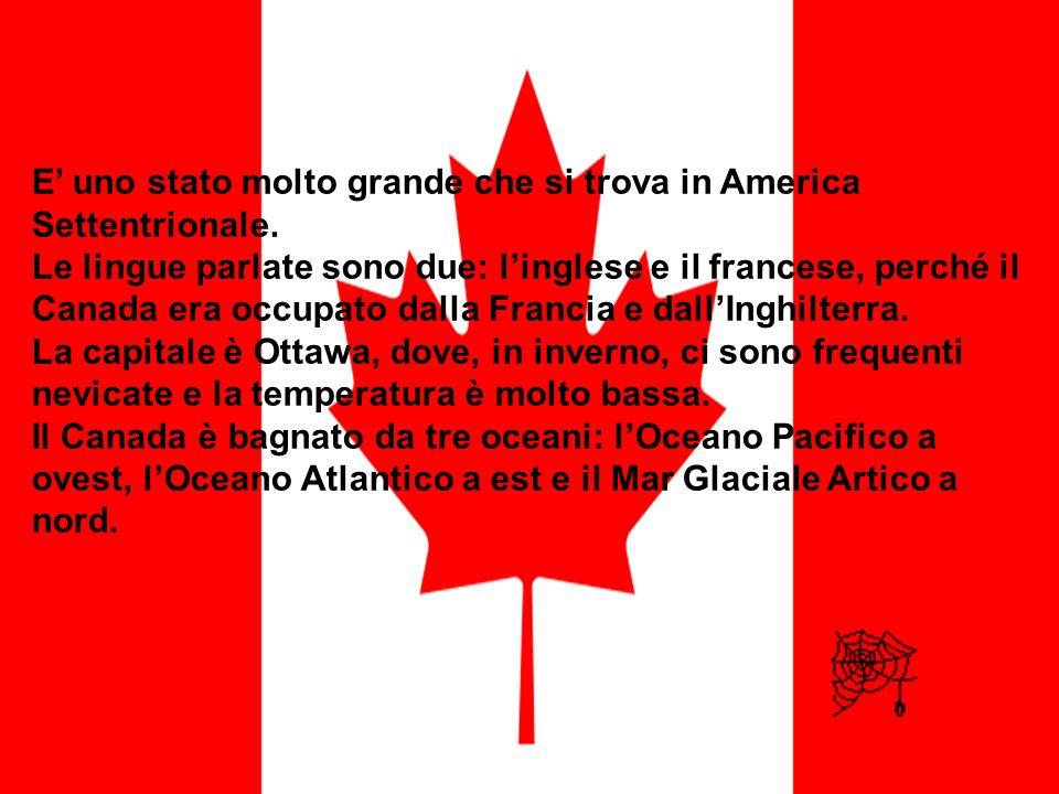 E' uno stato molto grande che si trova in America Settentrionale.