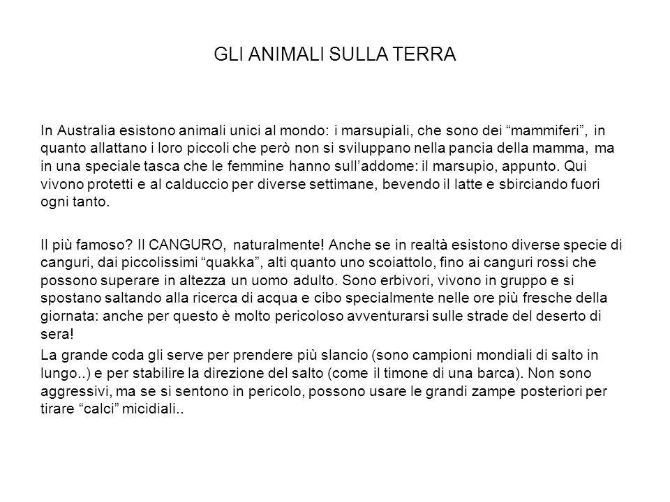 GLI ANIMALI SULLA TERRA