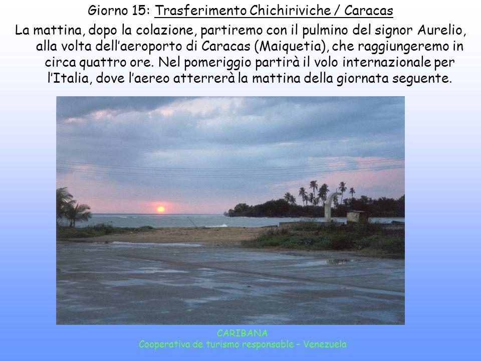 Giorno 15: Trasferimento Chichiriviche / Caracas