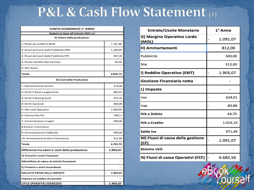 P&L & Cash Flow Statement (1)