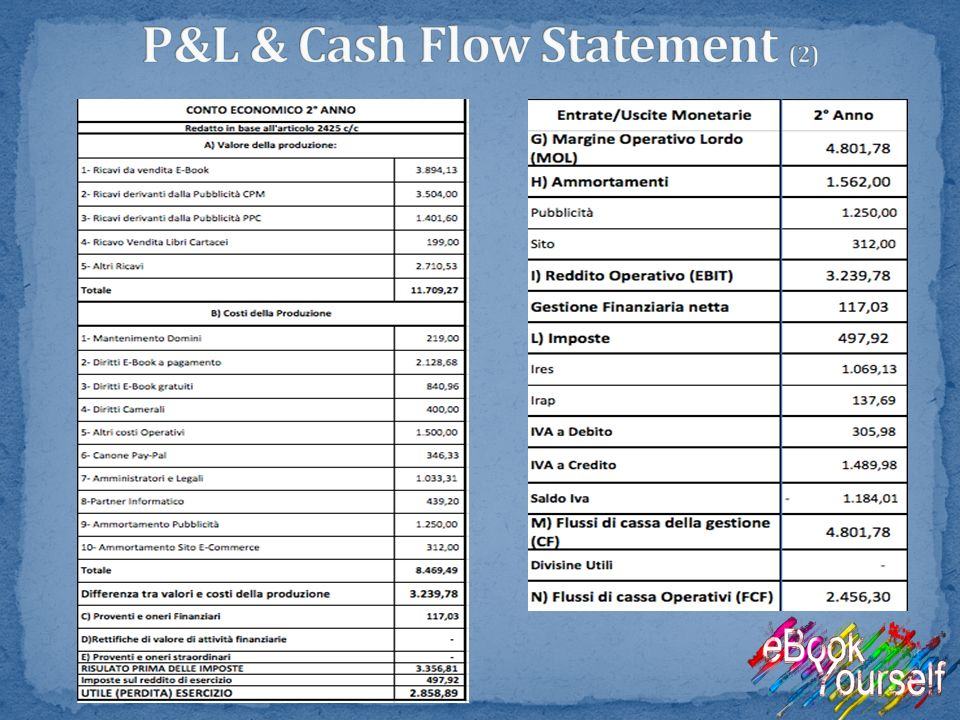 P&L & Cash Flow Statement (2)