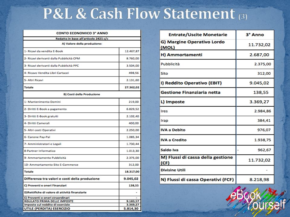 P&L & Cash Flow Statement (3)
