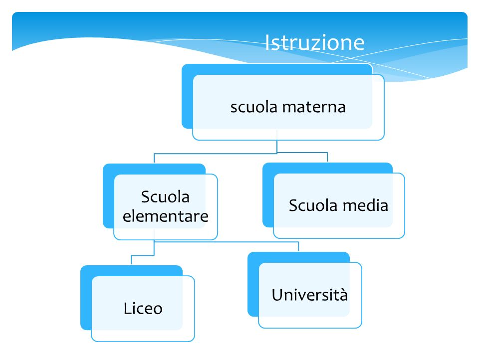 Istruzione scuola materna Scuola elementare Scuola media Università