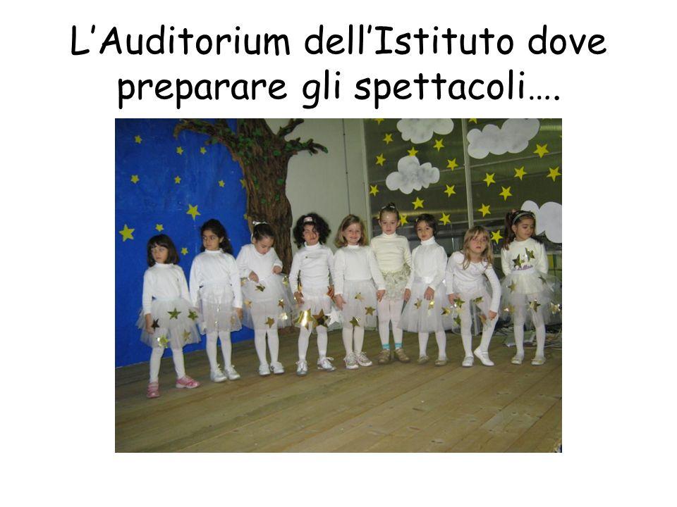 L'Auditorium dell'Istituto dove preparare gli spettacoli….