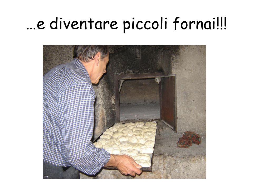 …e diventare piccoli fornai!!!