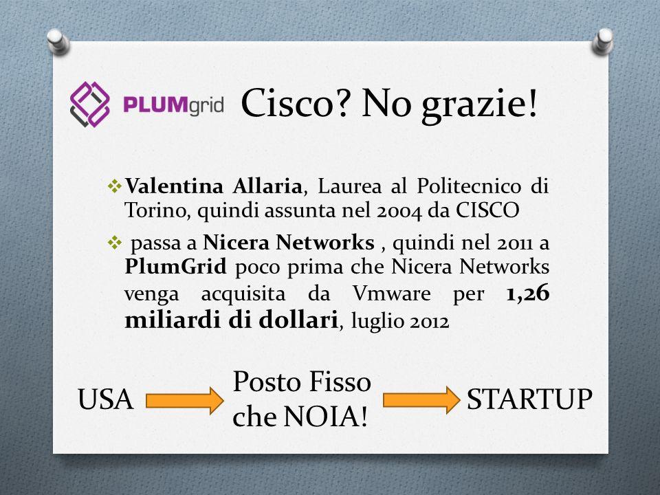 Cisco No grazie! Posto Fisso che NOIA! USA STARTUP