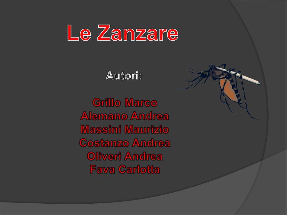 Le Zanzare Autori: Grillo Marco Alemano Andrea Massini Maurizio