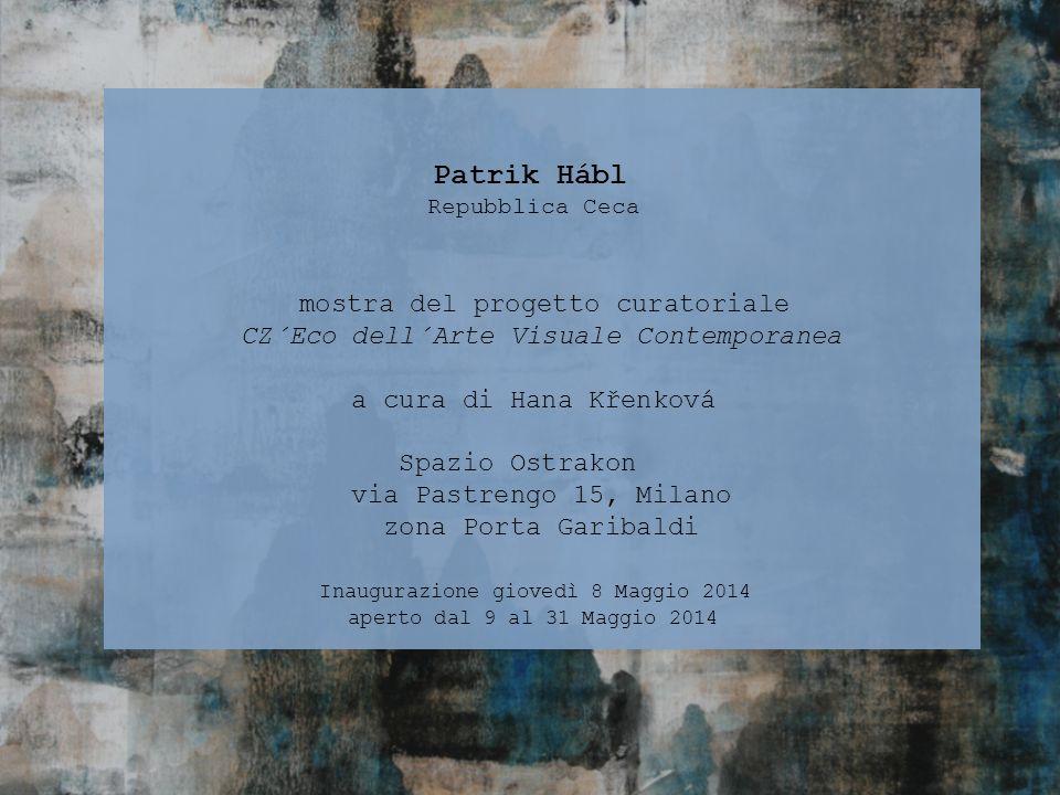Patrik Hábl mostra del progetto curatoriale