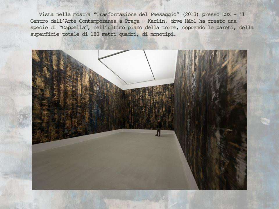 Vista nella mostra Trasformazione del Paesaggio (2013) presso DOX - il Centro dell'Arte Contemporanea a Praga - Karlín, dove Hábl ha creato una specie di Cappella , nell'ultimo piano della torre, coprendo le pareti, della superficie totale di 180 metri quadri, di monotipi.