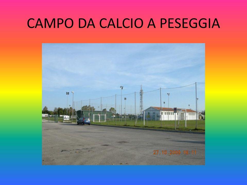 CAMPO DA CALCIO A PESEGGIA