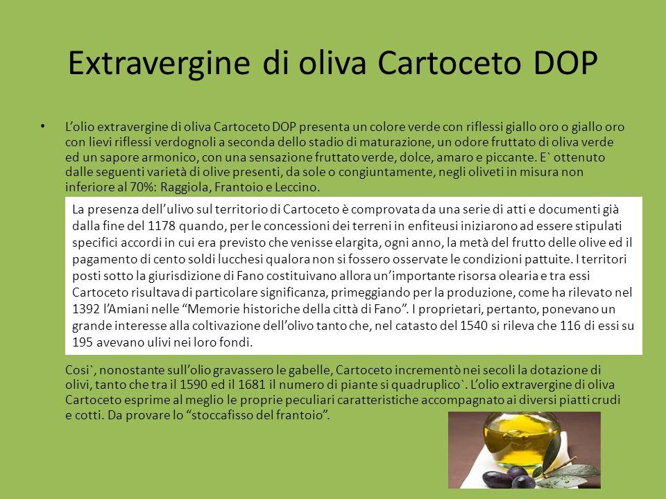 Extravergine di oliva Cartoceto DOP