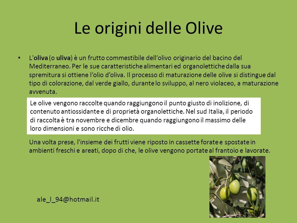 Le origini delle Olive ale_l_94@hotmail.it