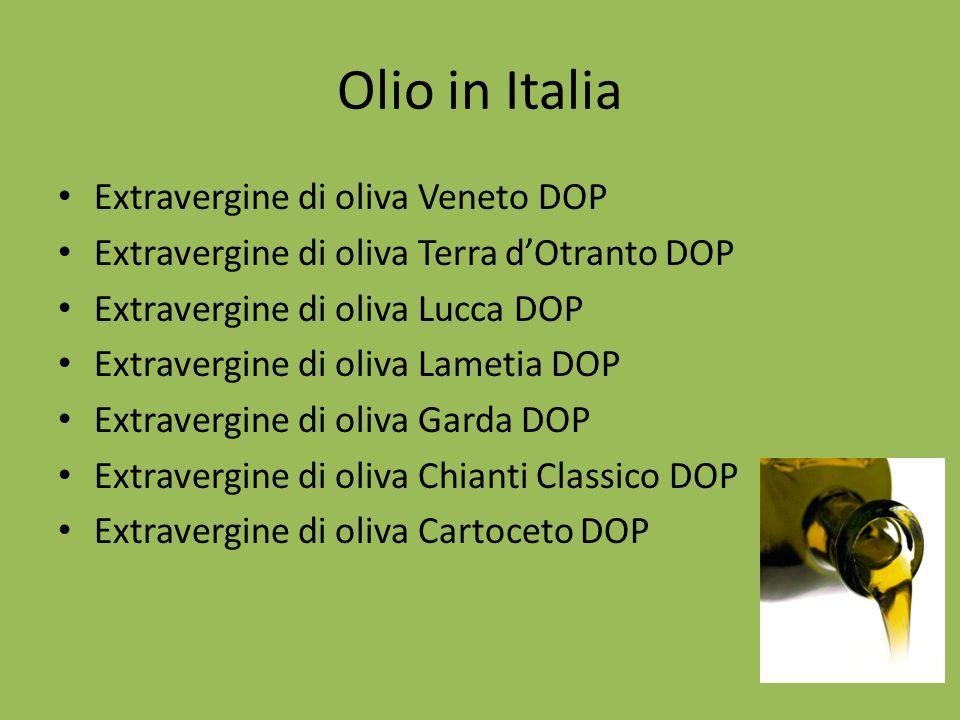 Olio in Italia Extravergine di oliva Veneto DOP