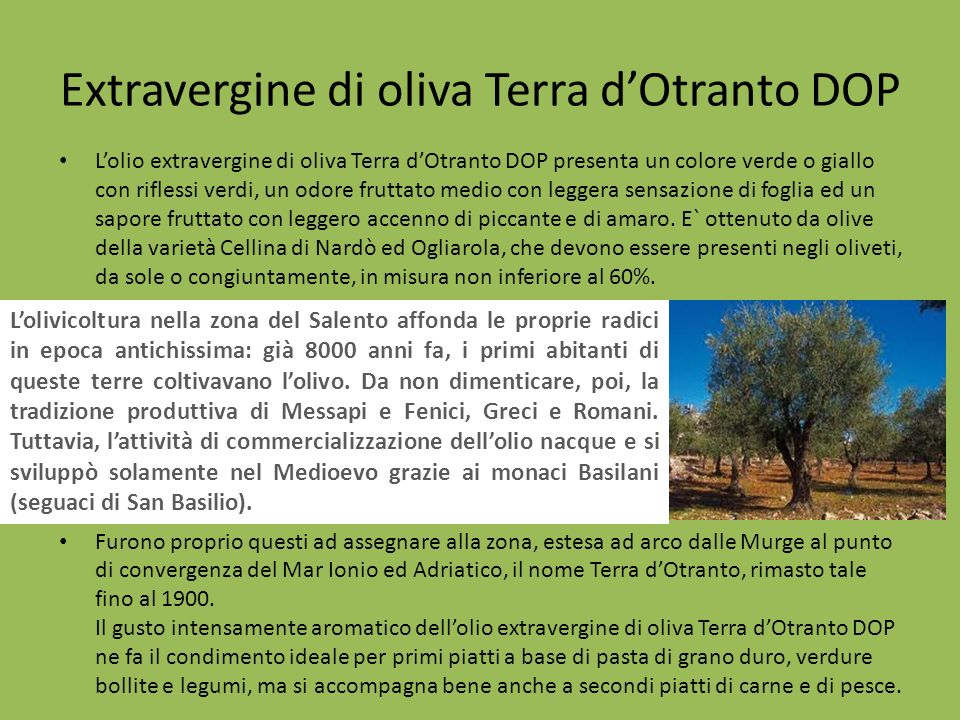 Extravergine di oliva Terra d'Otranto DOP