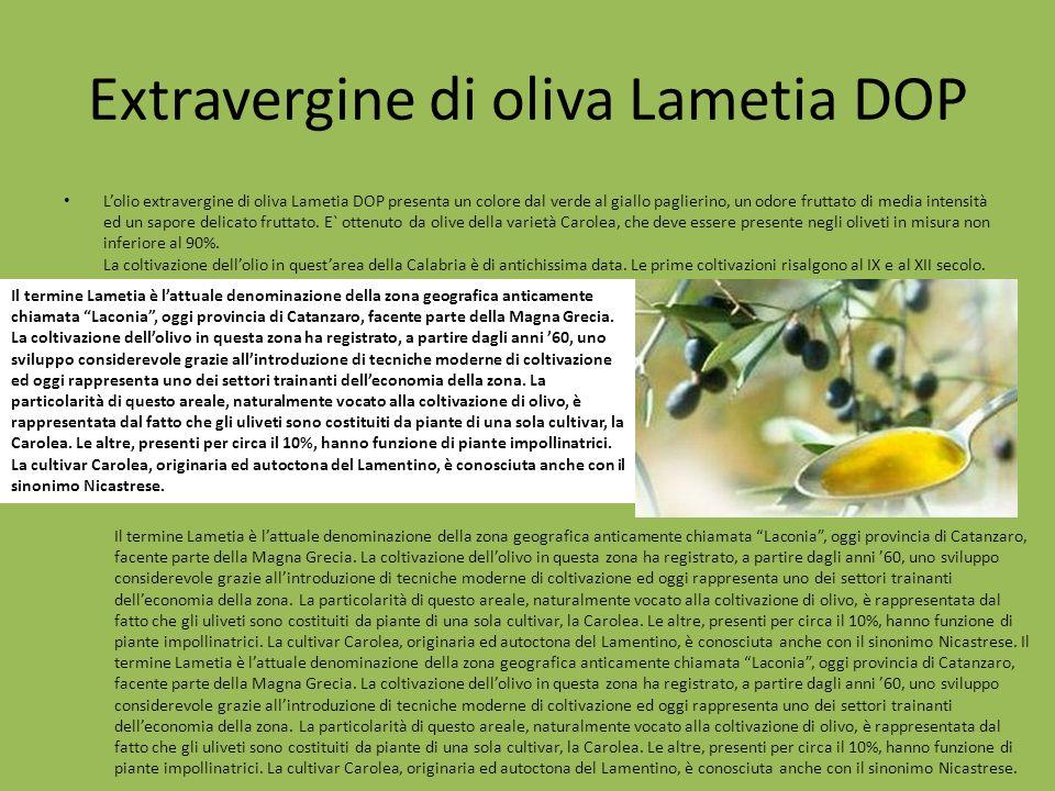 Extravergine di oliva Lametia DOP