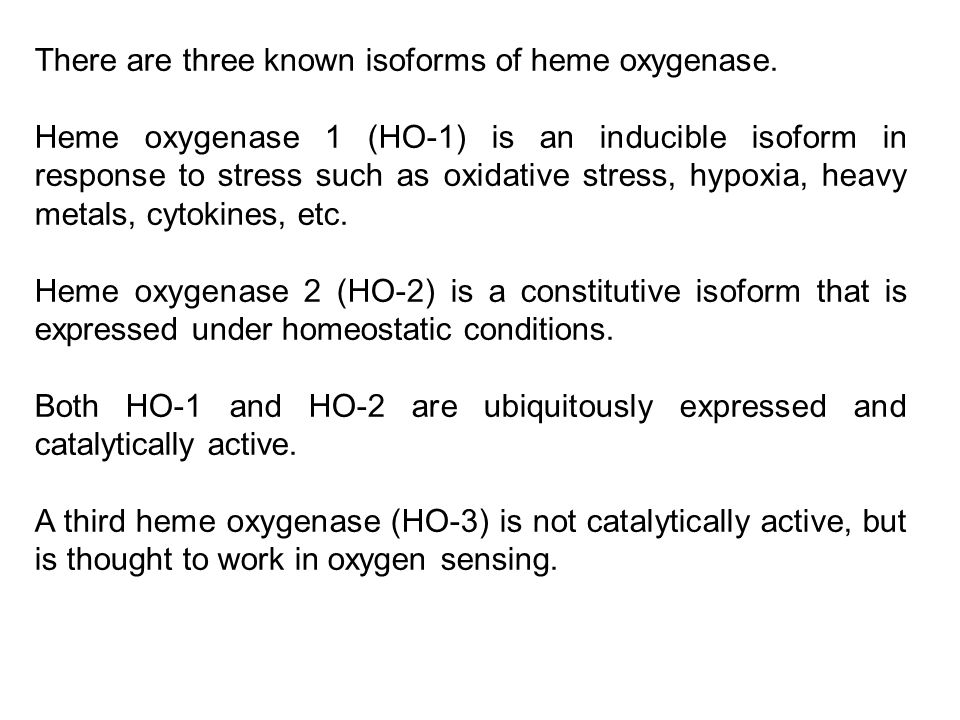 There are three known isoforms of heme oxygenase.
