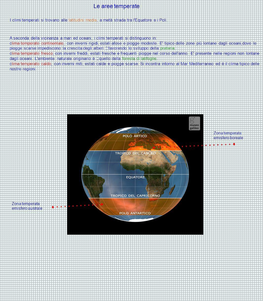 Le aree temperate I climi temperati si trovano alle latitudini medie, a metà strada tra l Equatore e i Poli.
