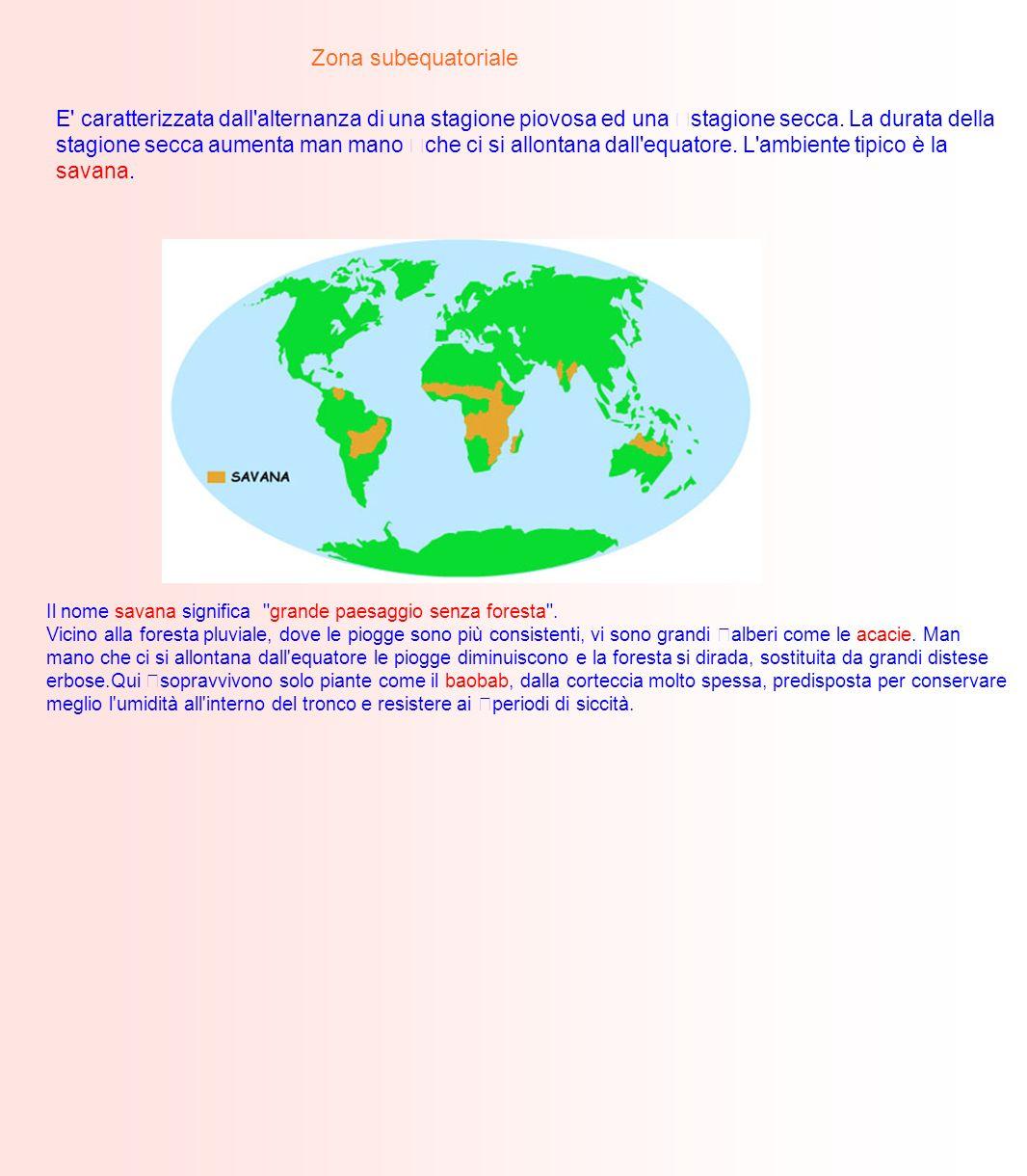 Zona subequatoriale