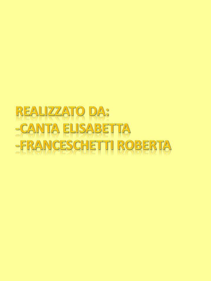 Realizzato da: -Canta Elisabetta -Franceschetti Roberta