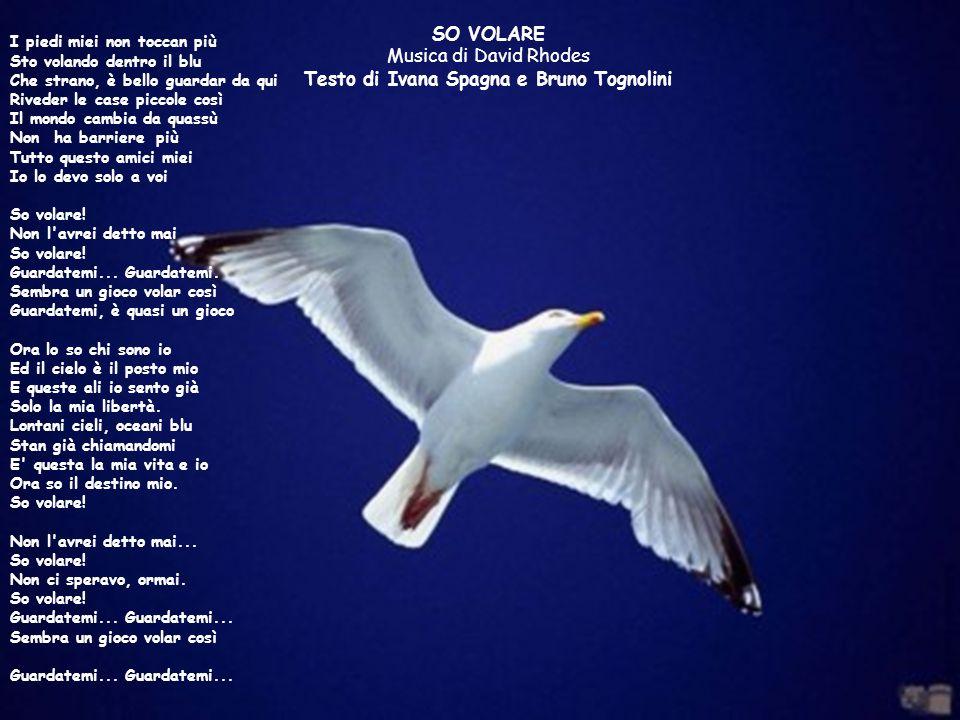 I piedi miei non toccan più Sto volando dentro il blu Che strano, è bello guardar da qui Riveder le case piccole così Il mondo cambia da quassù Non ha barriere più Tutto questo amici miei Io lo devo solo a voi So volare! Non l avrei detto mai So volare! Guardatemi... Guardatemi. Sembra un gioco volar così Guardatemi, è quasi un gioco Ora lo so chi sono io Ed il cielo è il posto mio E queste ali io sento già Solo la mia libertà. Lontani cieli, oceani blu Stan già chiamandomi E questa la mia vita e io Ora so il destino mio. So volare! Non l avrei detto mai... So volare! Non ci speravo, ormai. So volare! Guardatemi... Guardatemi... Sembra un gioco volar così Guardatemi... Guardatemi...