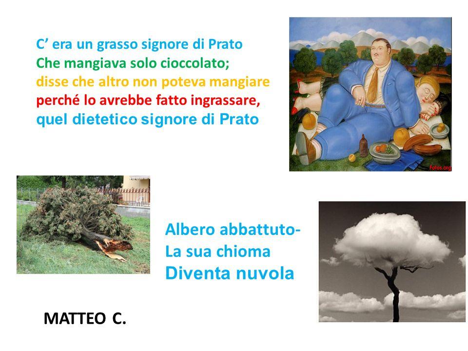 Albero abbattuto- La sua chioma Diventa nuvola MATTEO C.