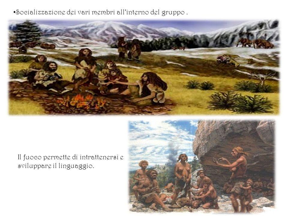 Socializzazione dei vari membri all'interno del gruppo .