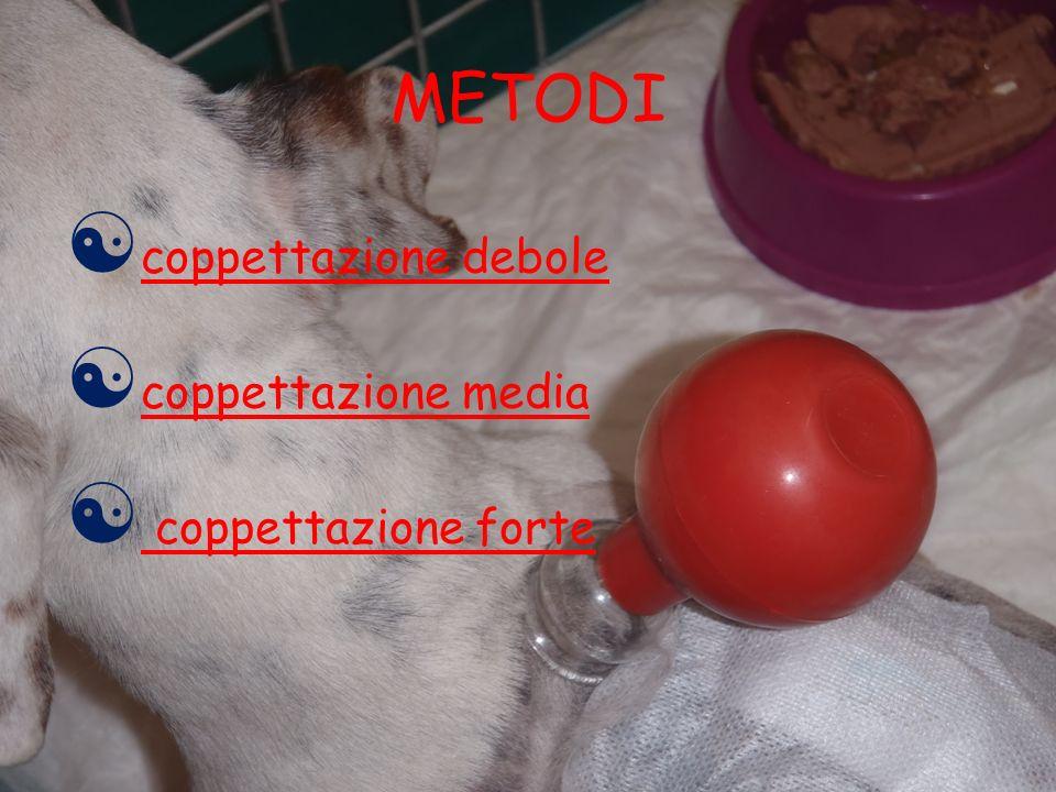 METODI coppettazione debole coppettazione media coppettazione forte