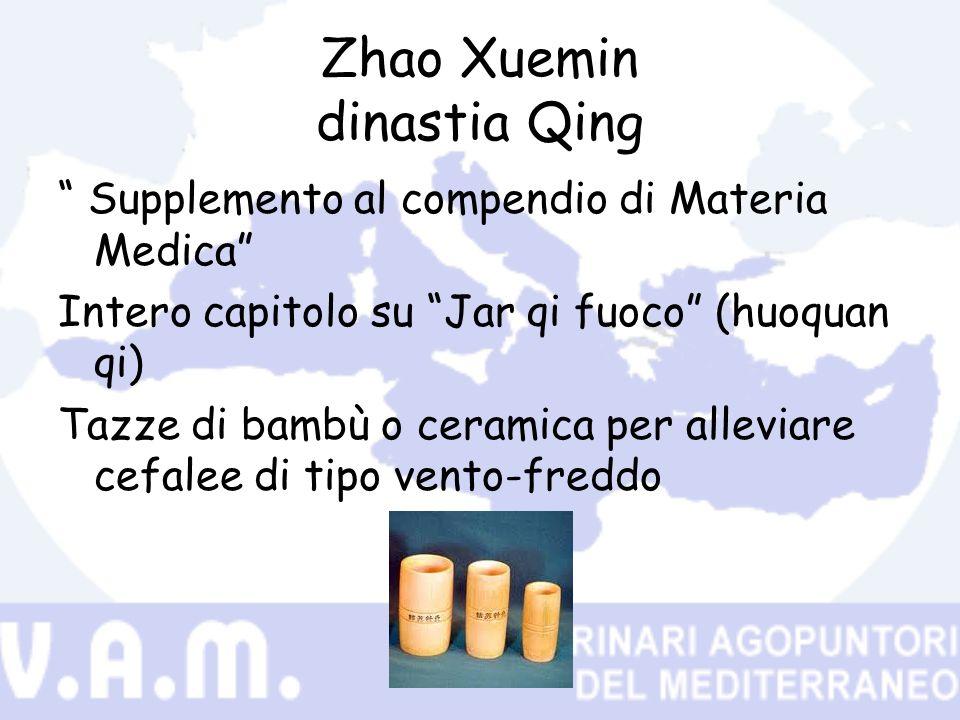 Zhao Xuemin dinastia Qing