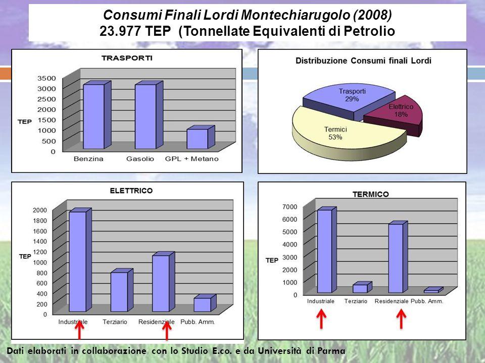 Consumi Finali Lordi Montechiarugolo (2008)