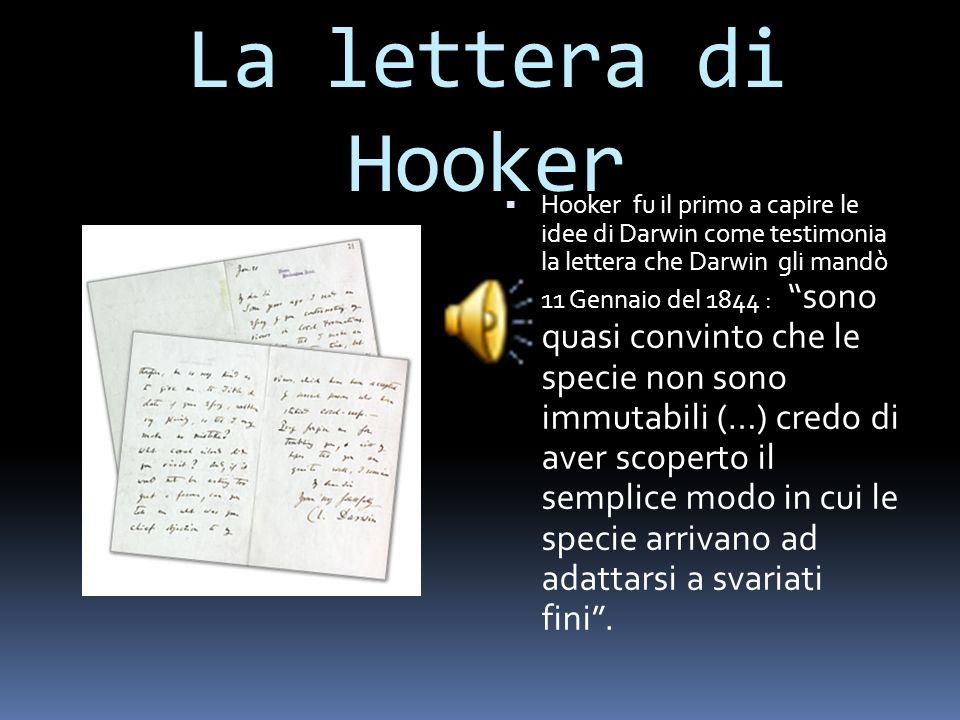 La lettera di Hooker
