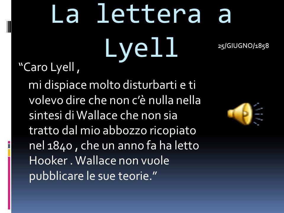 La lettera a Lyell 25/GIUGNO/1858.