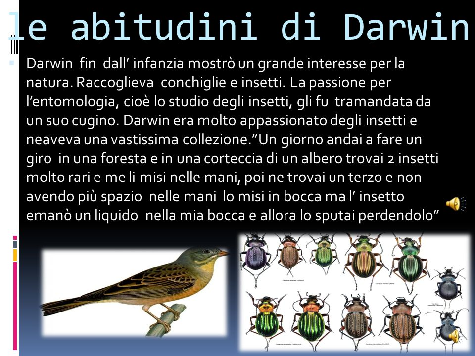 le abitudini di Darwin