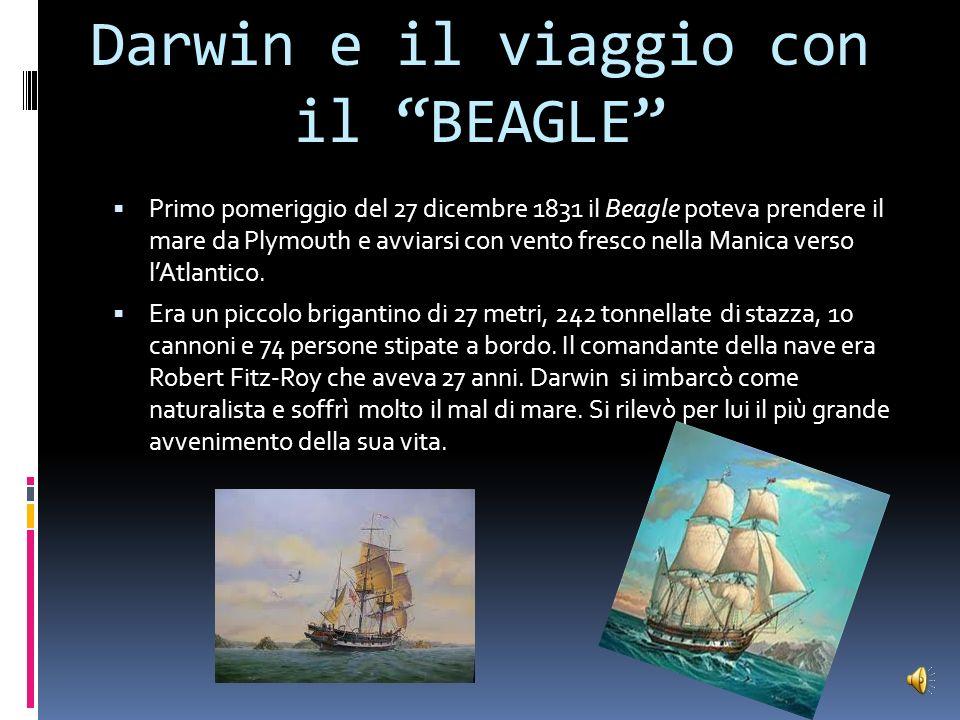 Darwin e il viaggio con il BEAGLE