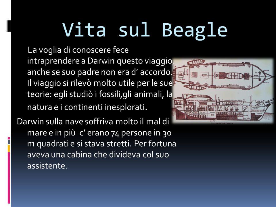 Vita sul Beagle