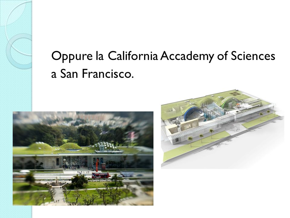 Oppure la California Accademy of Sciences a San Francisco.