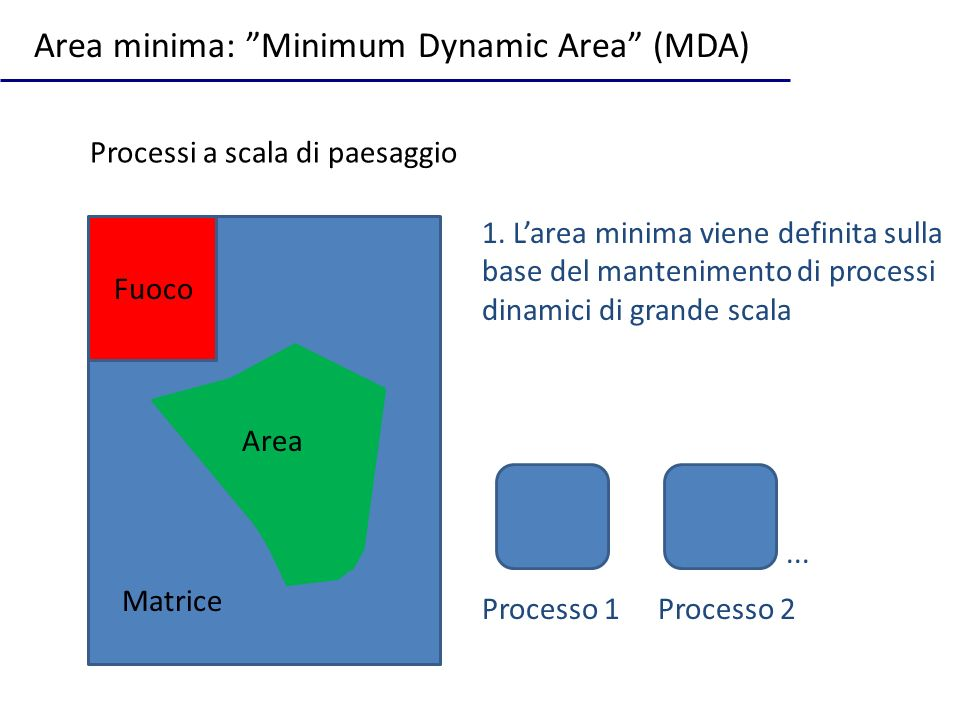 Area minima: Minimum Dynamic Area (MDA)