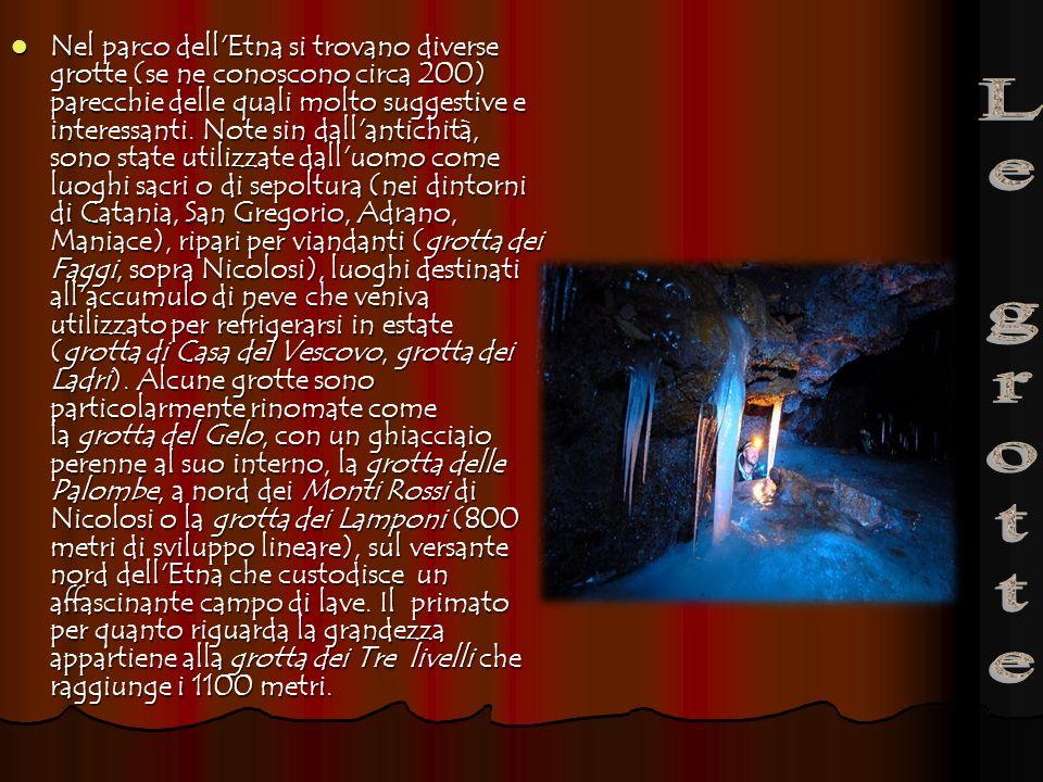 Nel parco dell Etna si trovano diverse grotte (se ne conoscono circa 200) parecchie delle quali molto suggestive e interessanti. Note sin dall antichità, sono state utilizzate dall uomo come luoghi sacri o di sepoltura (nei dintorni di Catania, San Gregorio, Adrano, Maniace), ripari per viandanti (grotta dei Faggi, sopra Nicolosi), luoghi destinati all accumulo di neve che veniva utilizzato per refrigerarsi in estate (grotta di Casa del Vescovo, grotta dei Ladri). Alcune grotte sono particolarmente rinomate come la grotta del Gelo, con un ghiacciaio perenne al suo interno, la grotta delle Palombe, a nord dei Monti Rossi di Nicolosi o la grotta dei Lamponi (800 metri di sviluppo lineare), sul versante nord dell Etna che custodisce un affascinante campo di lave. Il primato per quanto riguarda la grandezza appartiene alla grotta dei Tre livelli che raggiunge i 1100 metri.